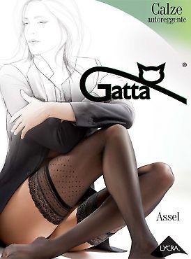 Gatta Assel 02